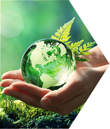 Insights into Sustainable Packaging webinar